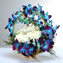 Arrangement of 6 white carnations 6 blue Orchids on Handle